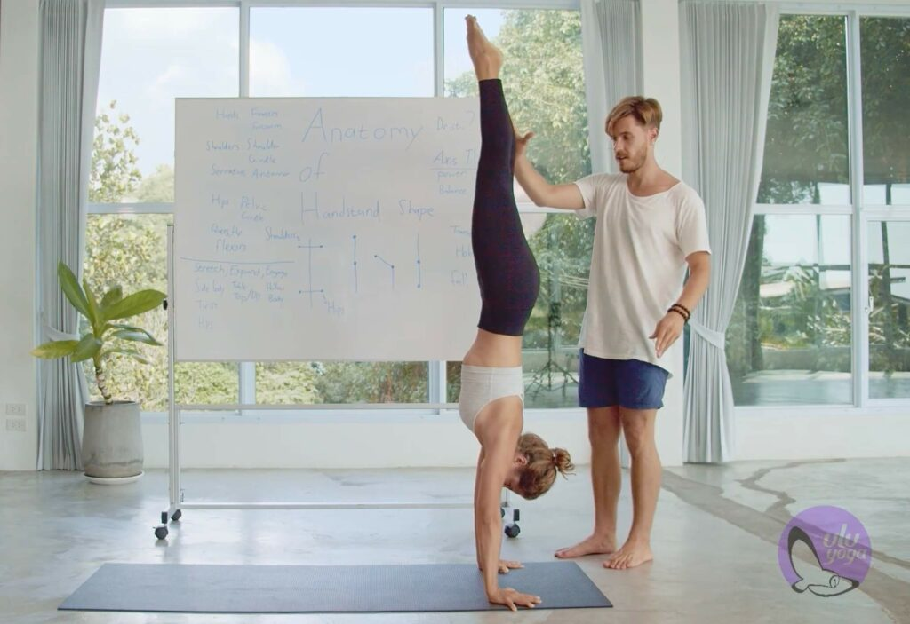 ULU Yoga - online yoga teacher training course - anatomy